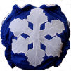 Cloth Diaper Reviews - Snowflake Diaper