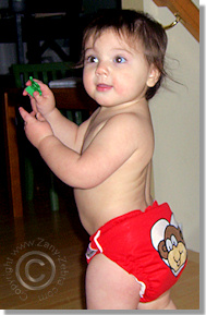 Cloth Diaper Picture - Monkey Business