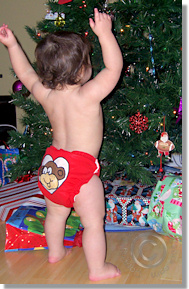 Cloth Diaper Picture - It's a Fluffy Christmas