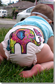 Cloth Diaper Picture - Baby on the Move