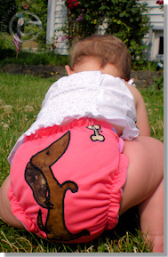 Cloth Diaper Picture - Who Let the Dog Out