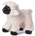 Washing Wool Diaper Covers - Lamb